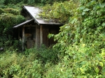 Japan Ghost House
