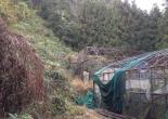 Abandoned greenhouses - Abandoned Japan