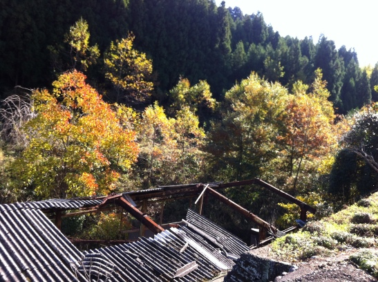 Abandoned Japan farm building falling to Earth