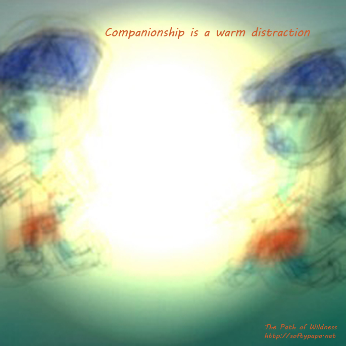 Companionship is a warm distraction - The Path of Wildness