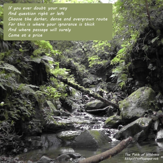 If you ever doubt your way - The Path of Wildness