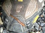 Leech on my boot