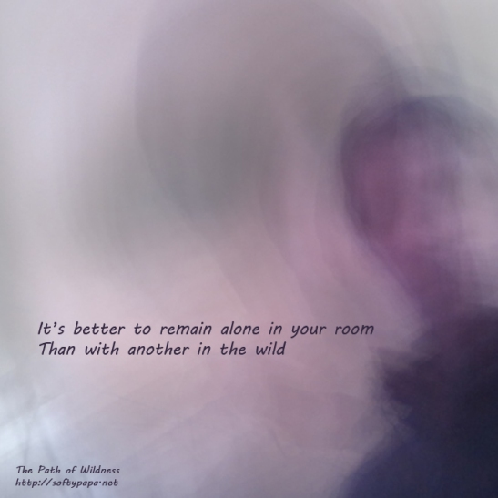 It's better to remain alone in your room Than with another in the wild - The Path of Wildness