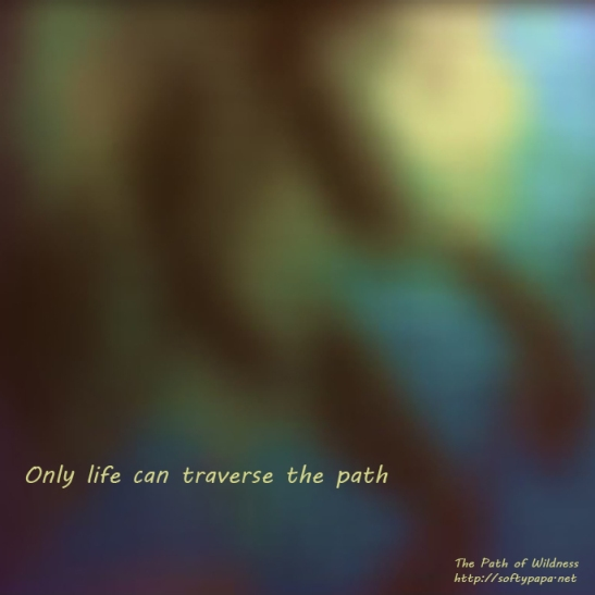 Only life can traverse the path