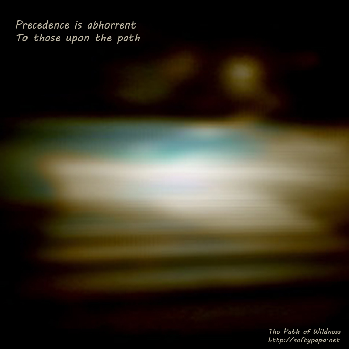 Precedence is abhorrent to those upon the path - The Path of Wildness