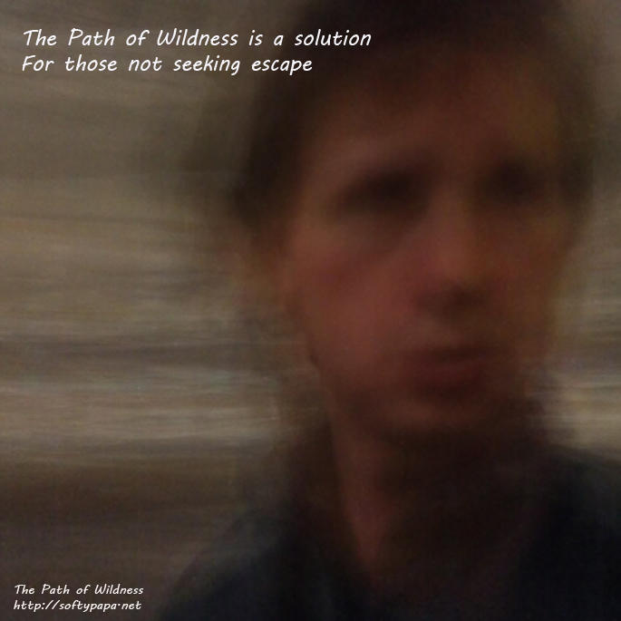The Path of Wildness is a solution for those not seeking escape - MEME