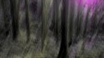 The Path of Wildness THUMBNAIL