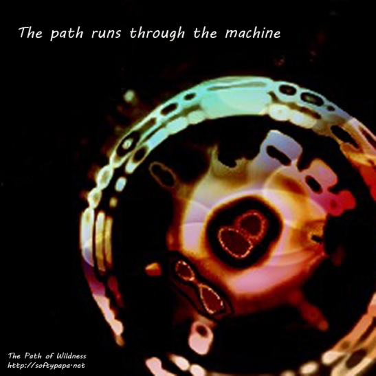 The path runs through the machine - The Path of Wildness
