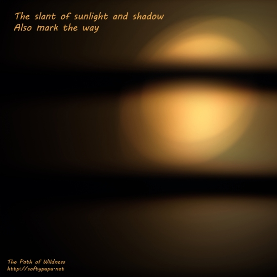 The slant of sunlight and shadow Also mark the way - The Path of Wildness - MEME