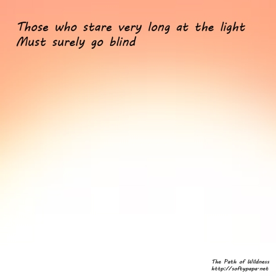 Those who stare very long at the light Must surely go blind - The Path of Wildness