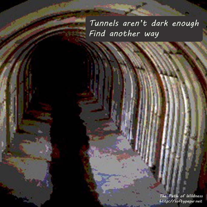 Tunnels aren't dark enough Find another way - The Path of Wildness