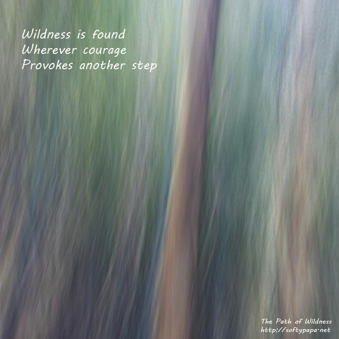 Wildness is found wherever courage provokes another step - The Path of Wildness - MEME