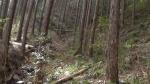 01-03-13 AJ Abandoned farm - Abandoned Japan 04