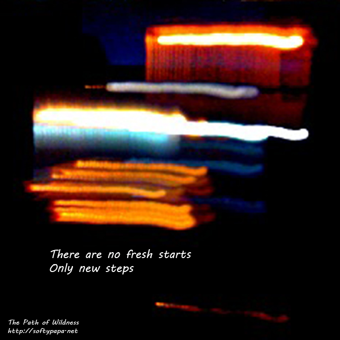 01-17-13 There are no fresh starts Only new steps - The Path of Wildness - MEME