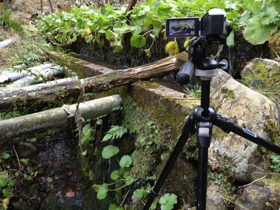 04 Japanese wasabi farm waterfall - Valley of lost wasabi farms hike