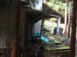 Abandoned Japanese mandarin orange farm - Abandoned Japan 06