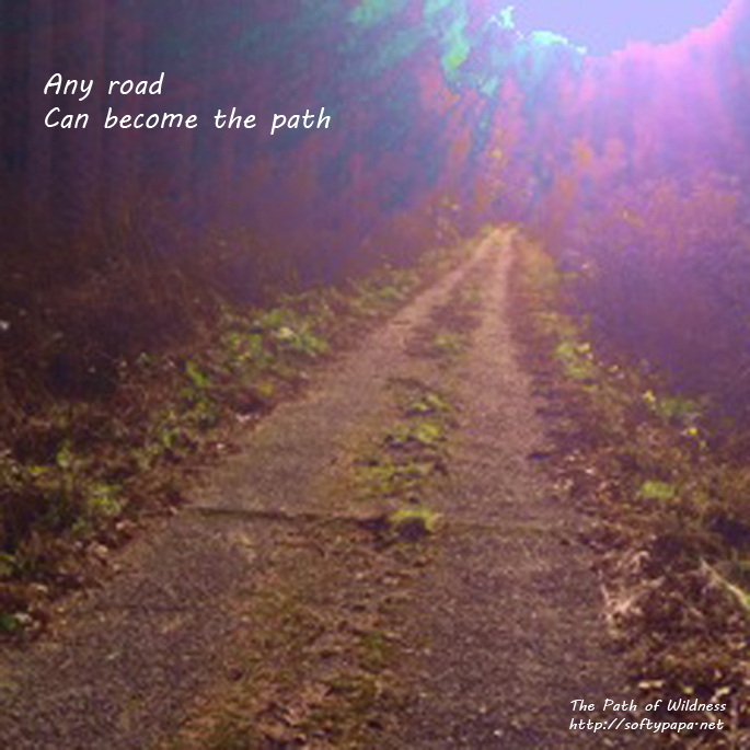 Any road can become the path - The Path of Wildness
