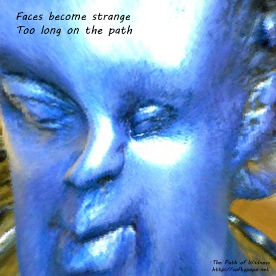 Faces become strange Too long on the path - The Path of Wildness