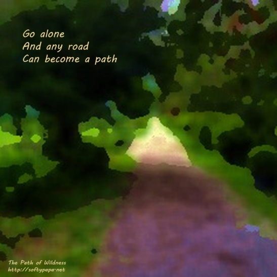 Go alone And any road Can become a path - The Path of Wildness - MEME v01