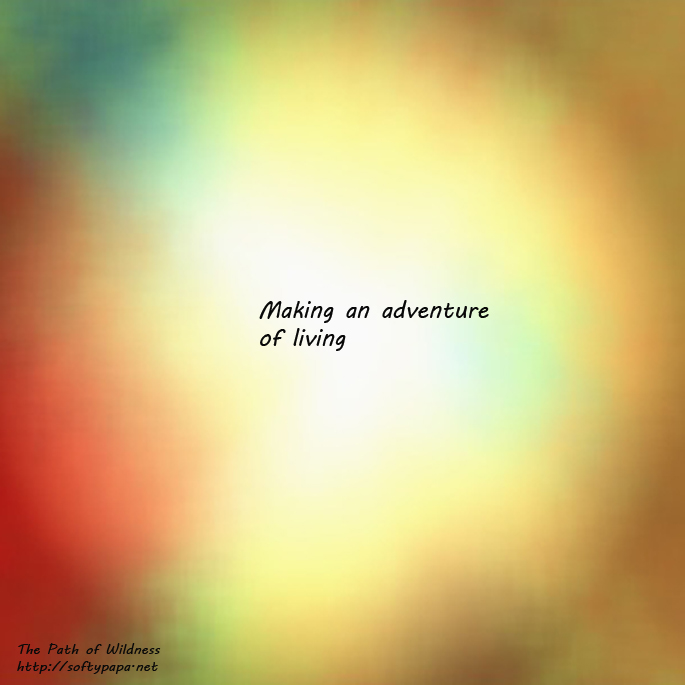 Making an adventure Of living - The Path of Wildness - MEME