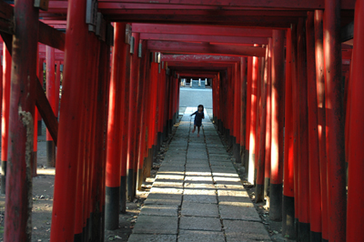 Japanese torii Shinto shrine gates