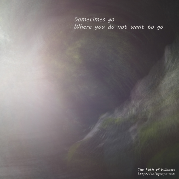 Sometimes go Where you do not want to go - The Path of Wildness