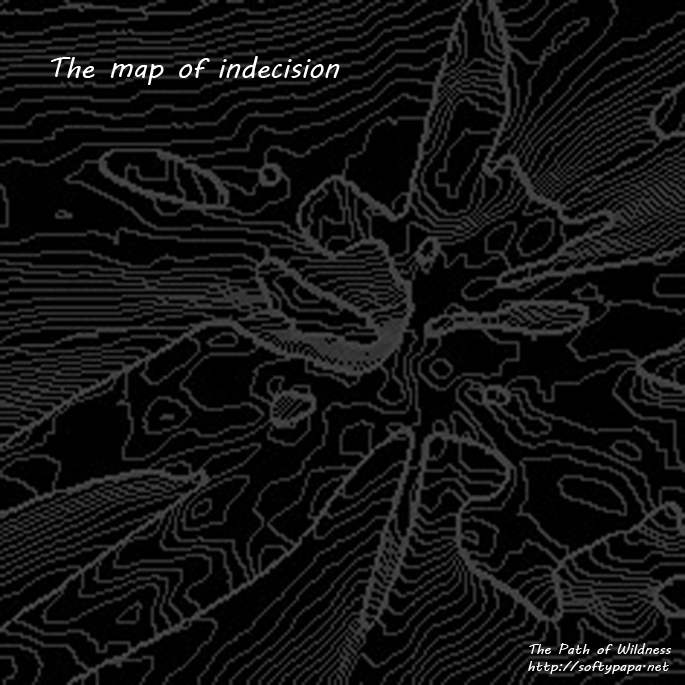 The map of indecision - The Path of Wildness