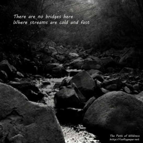 There are no bridges here Where streams are cold and fast - The Path of Wildness - MEME v01