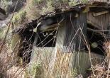 Abandoned green tea farm shed - Abandoned Japan