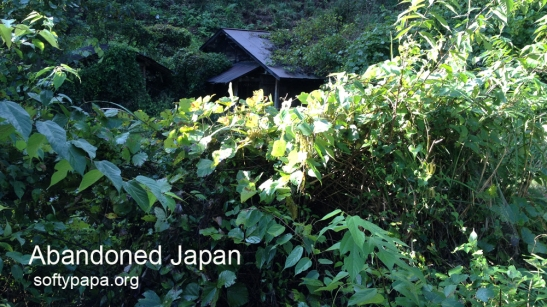 Farmhouse swallowed by the forest 日本の家は森に飲み込ま - Abandoned Japan 日本の廃墟