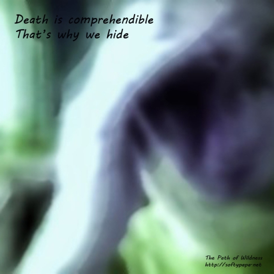 Death is comprehendible Thats why we hide