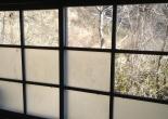 Forgotten green tea farm 忘れられた緑茶ファーム - Abandoned Japan 日本の廃墟
