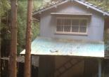 Spooky abandoned orange farm 不気味な捨てられたみかん農園 - Abandoned Japan 日本の廃墟